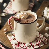 Peppermint Cocoa - Yankee Type